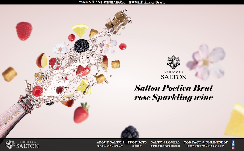 SALTON日本WEBサイト